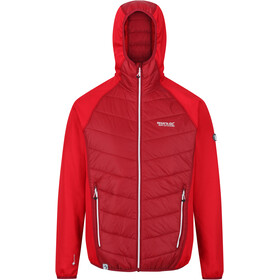 Regatta Andreson V Hybriditakki Miehet, delhi red/true red